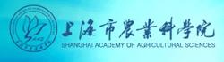 上海市农业科学院食用菌研究所